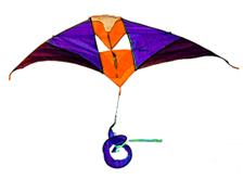 vlieger2